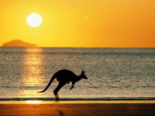 Sixt en Australia - PUNTA TACÓN TV