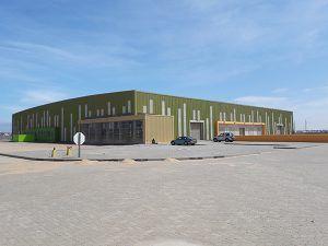 Planta de Namibia - PUNTA TACÓN TV